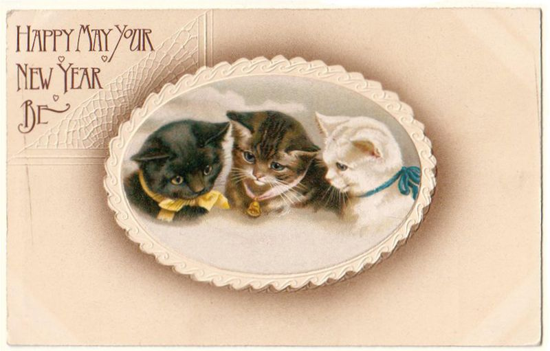 Postcard three kittens in lacey oval frame
